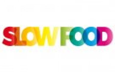 The word Slow Food. Vector banner with the text colored rainbow. © puckillustrations